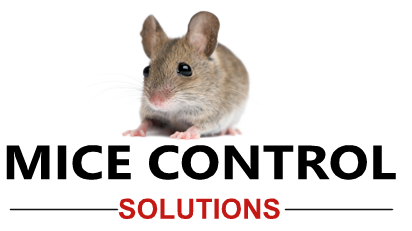 Michigan Mice Control