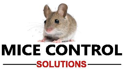 Michigan Mice Control